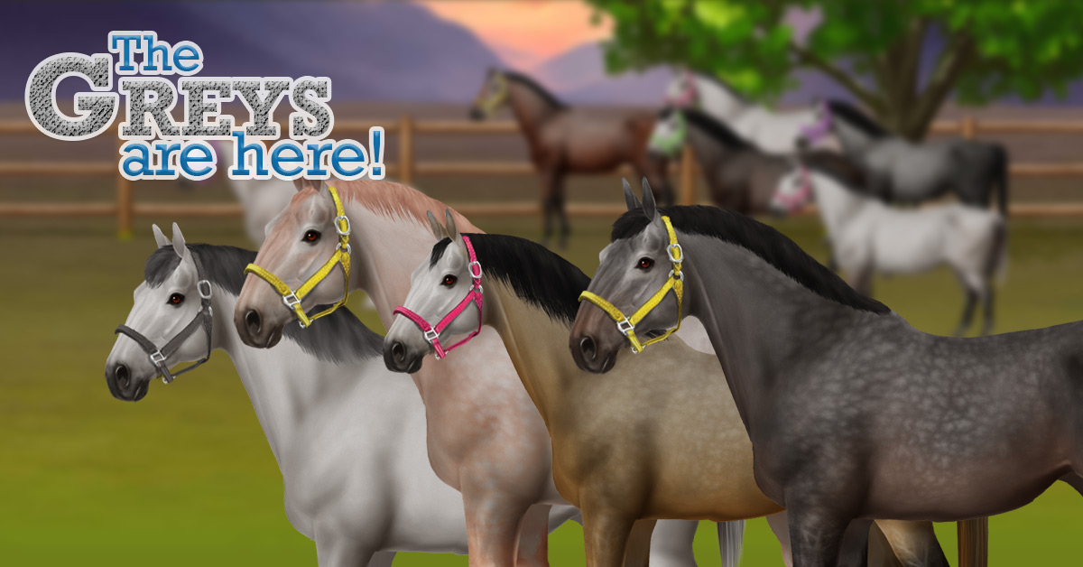 View topic - Horse World Online | Horse Breeding Genetics