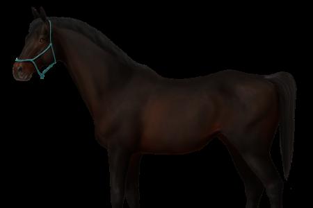 mulan horse world online