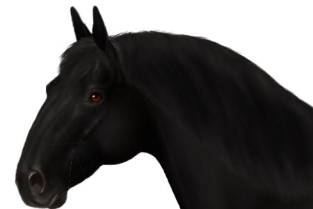 East Friesian