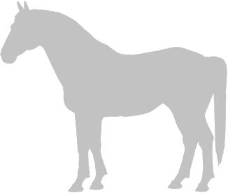 Latvian Harness Horse